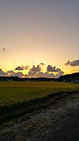 20170908山からの帰り道の様子夕焼け空2