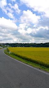 20170913J山へ向かう途中の様子田んぼと空1