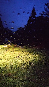 20170913山の様子雨が降り出す