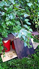 20170915味噌樽の保管3