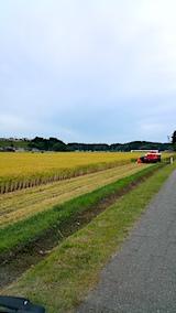 20170917山からの帰り道の様子コンバインによる稲刈り始まる3