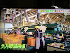 20170928永井野地区の選果場