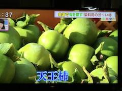 20170928永井野地区の天王柿1
