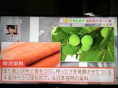 20170928永井野地区の天王柿で染色