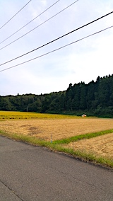 20171001山へ向かう途中の様子田んぼ稲刈り4