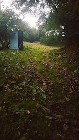20171004下草刈り後の様子6