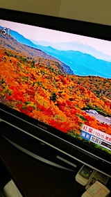20171011NHKテレビより八幡平の紅葉