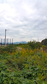 20171018外の様子昼前太平山