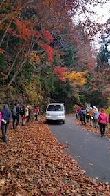 20171029岳岱途中の紅葉散策1