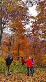20171029岳岱途中の紅葉散策5