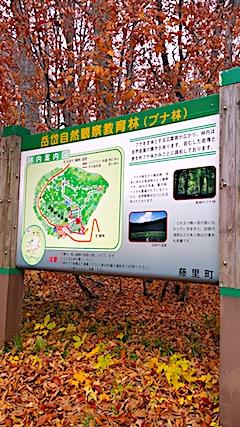 20171029岳岱自然観察教育林入口2