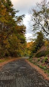 20171105山からの帰り道の様子峠道の紅葉1