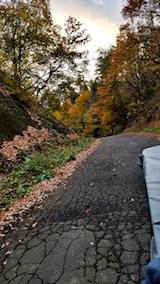 20171105山からの帰り道の様子峠道の紅葉2