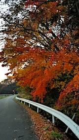 20171107上北手地区の紅葉散策5