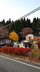 20171107山からの帰り道の様子紅葉