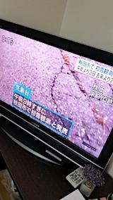 20171116NHKテレビ秋田市で初雪観測のニュース1