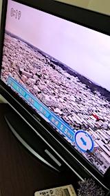 20171121NHKテレビ秋田市内の様子昼過ぎ