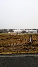 20171202山へ向かう途中の様子田んぼと山手台
