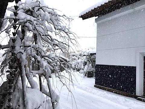 20171212会津に大雪2