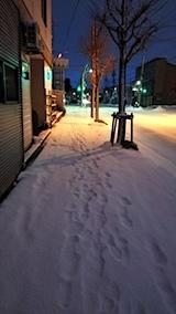 20171214雪寄せ前の歩道の様子