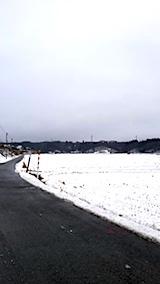 20171214山へ向かう途中の様子田んぼ