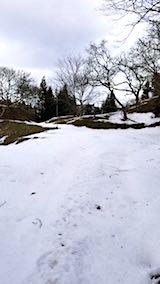 20180110ラベンダーの畑へと続く急な坂道の様子