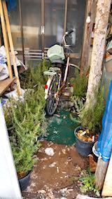 20180110自転車を小屋の中へ2