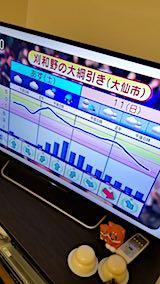 20180209NHKテレビ週末の天気予報刈和野の大綱引き