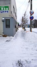 20180213雪寄せ後の様子朝歩道