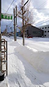 20180213外の様子昼過ぎ歩道1