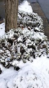20180312外の様子朝ようやく雪がやむ1