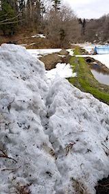 20180313山の様子除雪された雪