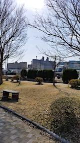 20180319外の様子昼過ぎ近くの公園4