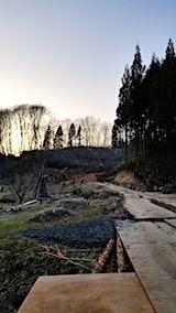 20180327山からの帰り道の様子杉の伐採2