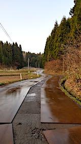20180408山からの帰り道の様子伐採現場近くの道路