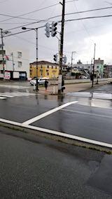 20180413外の様子朝雨が降り出す
