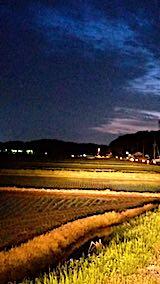 20180512山からの帰り道の様子田植え後の田んぼ