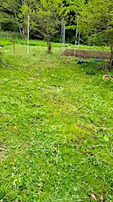 20180513野菜畑へ向かう道の草刈り
