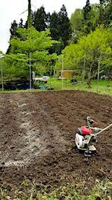 20180513野菜畑を耕す2