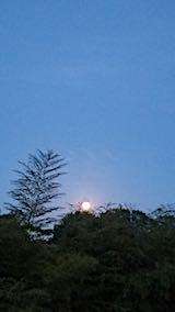 20180529ラベンダー畑から望んだ満月の様子
