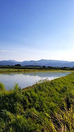 20180602素晴らしい青空に恵まれた会津盆地と明神ケ岳