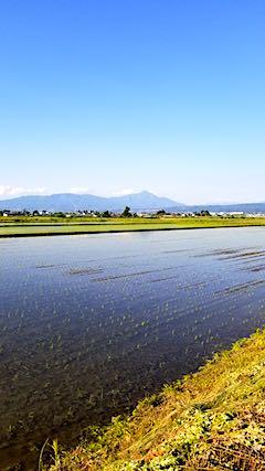 20180602素晴らしい青空に恵まれた会津盆地と磐梯山