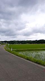20180614山へ向かう途中の様子田んぼと空