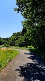 20180619山へ向かう途中の様子峠道