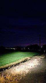 20180706山からの帰り道の様子田んぼと空