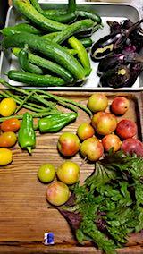 20180716野菜とスモモの収穫