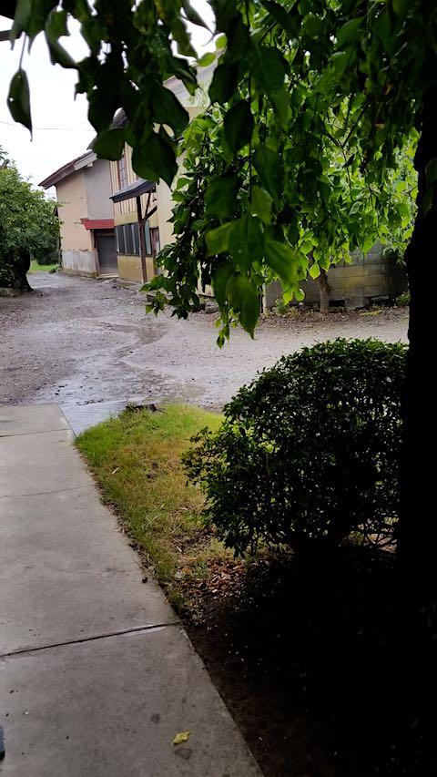 20180813外の様子昼過ぎ雨が降り出す5