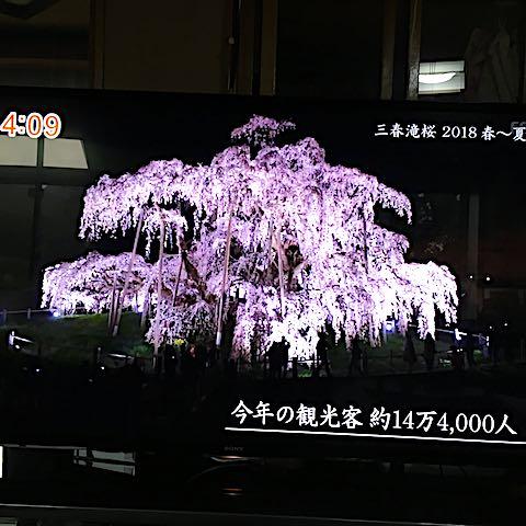 20180904三春滝桜2018春から夏3
