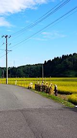 20180915山へ向かう途中の様子田んぼの稲刈り3