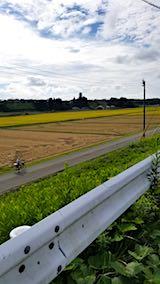 20180916山へ向かう途中の様子田んぼと空稲刈り1